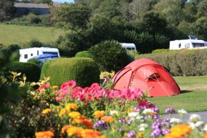St Mawes Camping Campsites