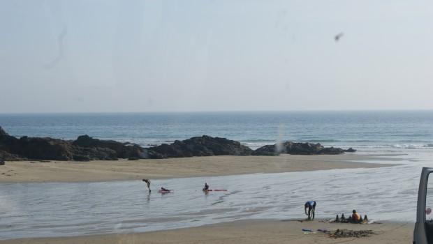 Roseland Beaches