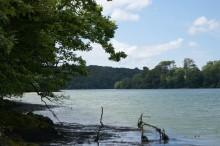 Roseland rivers